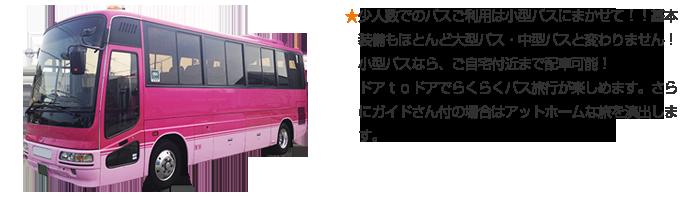 ★少人数でのバスご利用は小型バスにまかせて!!基本装備もほとんど大型バス・中型バスと変わりません!小型バスなら、ご自宅付近まで配車可能!ドアtoドアでらくらくバス旅行が楽しめます。さらにガイドさん付の場合はアットホームな旅を演出します。